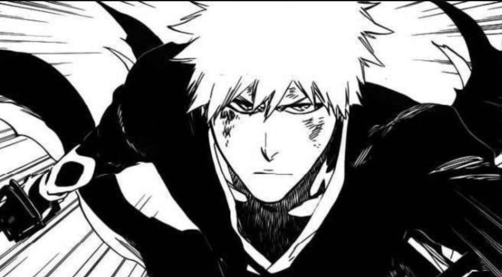 Bleach Manga Order: